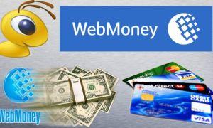 Как обналичить средства, 12 вариантов вывода денег с кошельков Вебмани