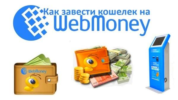 вносим средства на кошелек WebMoney через терминал